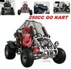 Go Kart/Buggy/EEC Go cart