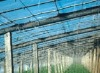 Polyethlene greenhouse film