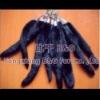 BG5292 Genuine Mink Fur Tail Key Chain Key Ring Lovely OEM Wholesale/Retail