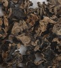 2010 new crop Black fungus-fungi