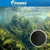 All Natural Seaweed Fertilizer (CAS No.: 68917-51-1)