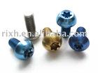 titanium screws