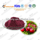 100% Pure Cranberry Extract powder