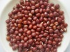 kidney bean adzuki bean canned bean round shape black kidney bean dongbei bean pulses