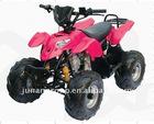 HOT 110CC ATV (JA110-2)
