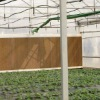 Cellulose Media for Greenhouse / Chicken House (OFS)