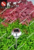 Professional supplier of solar lawn light 0.07W
