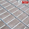 Welded Wire Mesh (ISO9001 Certified) factory hot sale