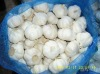 Chinese Normal White Garlic
