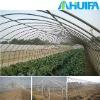 Small Plastic Greenhouses