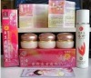 2012 new skin care product YiQi Whitening cream