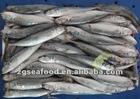 Frozen blue mackerel (Decapterus Lajang)