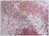Beautiful glitter mesh fabric for shoes