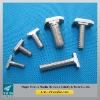 fastener of T bolt