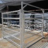 Cattle Yard Panel With Gate