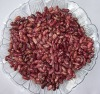 Purple Speckled Kidney Beans Chinese Origin