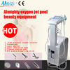 Hottest sell oxygen facial instrument with CE
