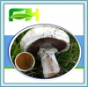 White Button Mushroom/Agaricus Bisporus Polysaccharide