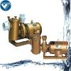 Swimming pool equipment/3hp pool pump
