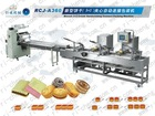 Biscuit pillow packing machine RCJ-A360