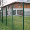 PVC Coated Wire Mesh Fence - facotry direct sell