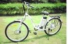 lithium battery electric bike
