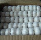 5.0 export red garlic