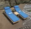 Garden Furniture-chaise lounge and sofa bed