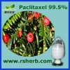 High quality Paclitaxel 99.5%