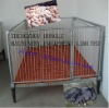 FLS Powder painting & hot-dip galvanized piglets nursery crate