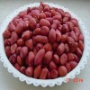 Xiang Nong Red Skin Peanut Kernels