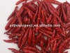 Dry Chili and Spice dey yidu chili 2012