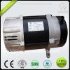 Brush & Brushless alternator with AVR