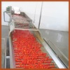High-Nutritional Tomato Paste Ketchup Factory