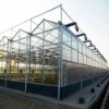 4mm HS green house glass
