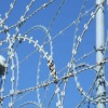 Factory razor wire fence ( since 1989 )
