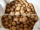 high quality Chinese walnut in shell