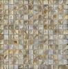 beautiful natural shell mosaic pattern