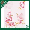 2011 Newest PVC Removable Wall Sticker SDW-110126