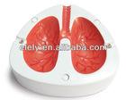 Unique electronic cough lung ashtray