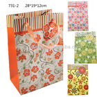Folded Convenient PaperBag with String/Fashion Shopping Bag/Printed Paper Bag