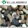 high quality frozen boletus edulis