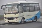 2013 new design CNG mini bus LS6603 / NGV