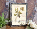 Vintage Parsley Plant Framed Reclaimed Wood Sign