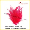 Coque Hackle Feather pad