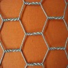 hot dip galvanized hexagonal wire mesh(professional manufacture)
