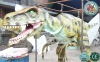 Dinosaur Costume Raptor Style