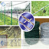 Galvanized Barbed wire with higher quality