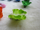lime Crystal Rose Flowers