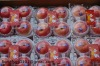 Yantai A grade fuji applez(18kg carton packing )